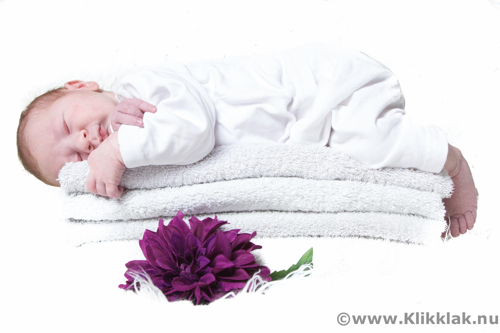Fotoshoot met baby in de studio, newbornshoot